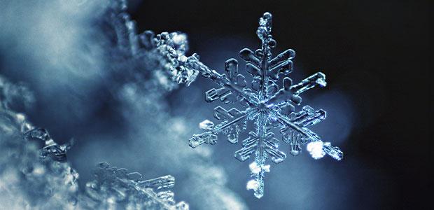 snowflake macro on blurry background