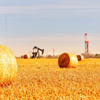 Haybills in foreground, pumpjack and rig in the background